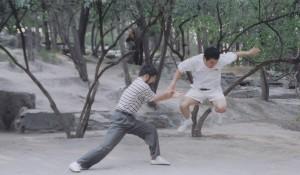 陈中华余永安推手2004