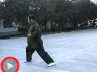 蒋家骏老师陈式太极拳一路