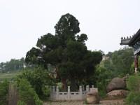 6[1].22游乐园照片 061