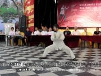陈中华和谐杯表演2012