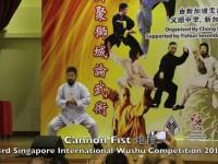 陈中华2013年新加坡炮捶表演