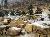 大青山15雪1