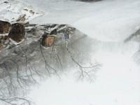 大青山15雪7