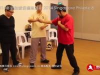 xinjiapo2014sike8-6-full