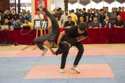 大青山大赛16 - 推手1