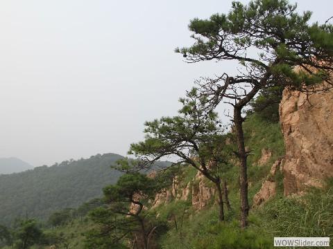 大青山 2011 - 22